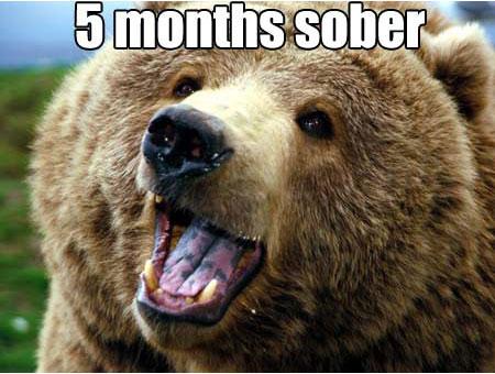 cocaine-bear-now.jpg