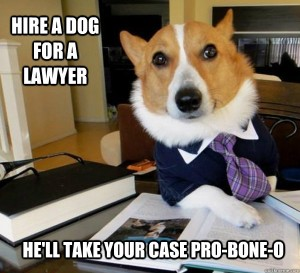 Lawyer Dog Meme (10)