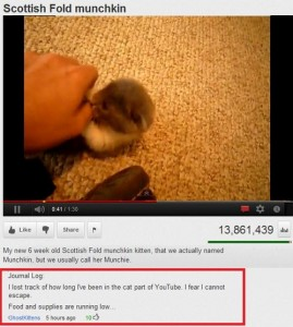 Funny Youtube Comments (16)