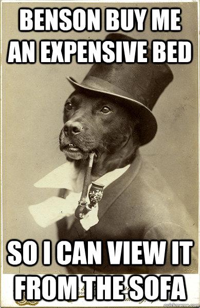 Jeeves Meme Dog Bed