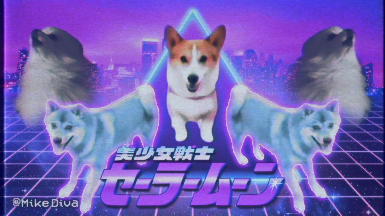 Funny Meme Mashups : Dog meme mashup by mike diva pleated jeans
