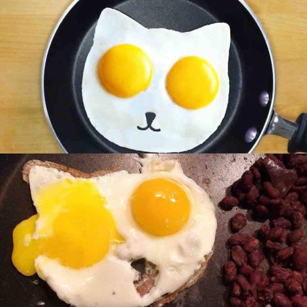 Worst Cat Food