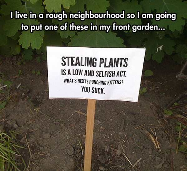Garden Puns