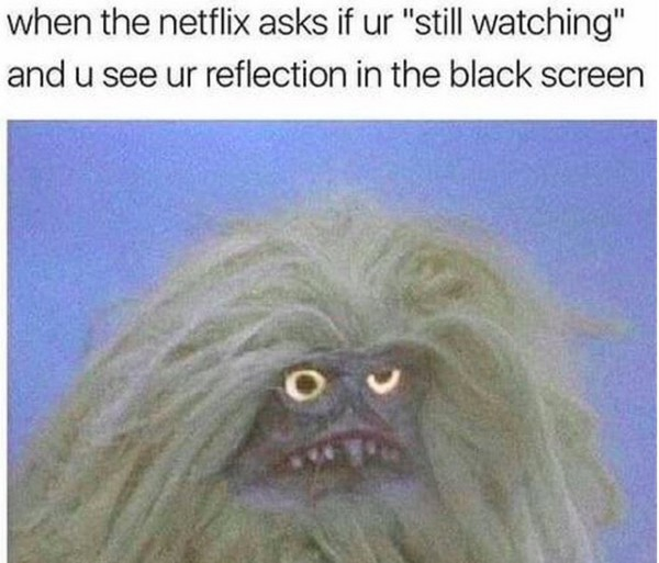 15 Funny Netflix Memes To Pass The Time Til You Can Watch ...