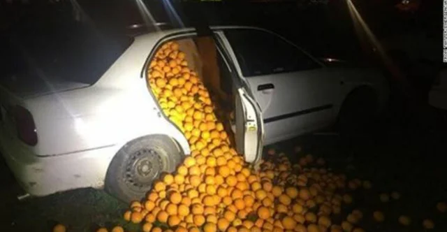 car full of oranges, car overflowing with oranges