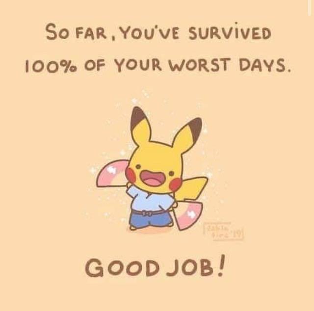 memes, aww, good news, positivity, positive vibes, reddit