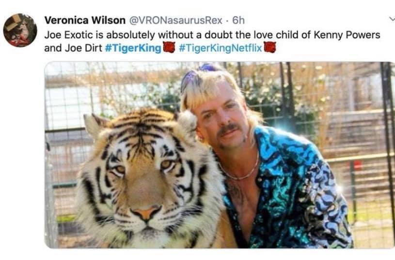 tiger king memes, joe exotic, tigers
