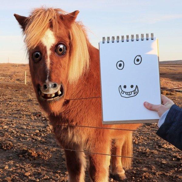 funny photoshop, photoshop fails, drawing, kids, art