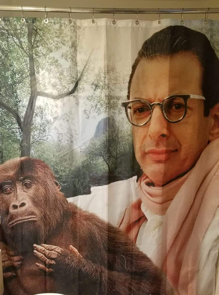 jeff goldblum shower curtain, thrift shopping finds, secondhand finds, thrift store finds, funny thrift store finds, funny secondhand finds, funny second hand find, funny second hand finds, weird second hand find, funny thrift shop find, funny thrift finds, funny thrift find, strange thrift finds, weird thrift store find, strange thrift store find, weird thrift store finds, thrift store finds, weird secondhand finds, weird secondhand finds that just need to be shared