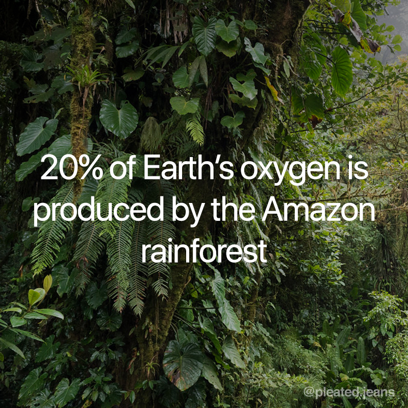 20 percent of oxygen produced by amazon