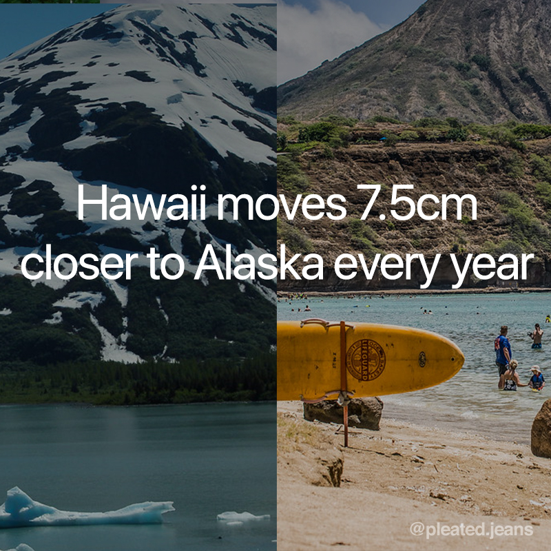 hawaii move 7.5 cm closer to alaska every year, cool science fact, random science fact, fun science fact, science fact, awesome science fact, random science facts, science facts, fun science facts, interesting science facts, fun facts about science, fun science facts, weird science facts, interesting facts about science, cool science facts, crazy science facts, neat science facts, amazing facts about science, strange science facts, odd science facts, true facts about science, random fun facts about science, unique science facts, unusual science facts, weird fun facts about science, obscure science facts, weird but true facts about science, amazing facts science pictures, amazing facts about science images, fabulous facts about science, some interesting facts about science, weird interesting facts about science, interesting amazing facts about science