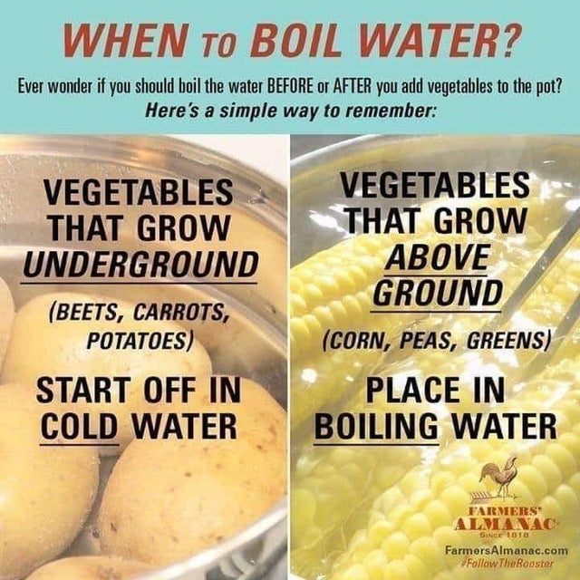 when to boil vegetables chart