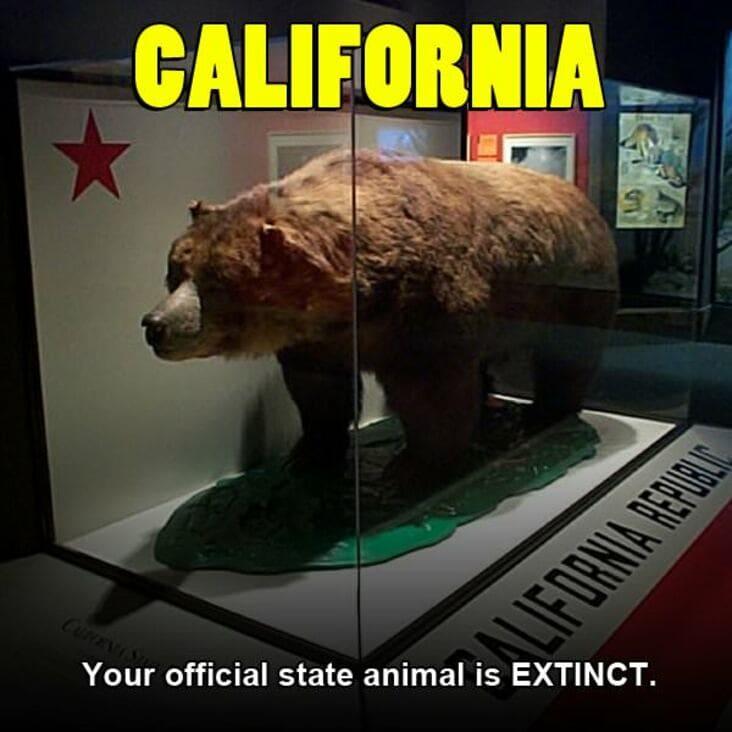 embarrassing california fact, embarrassing fact about california, california embarrassing fact, embarrassing california state fact