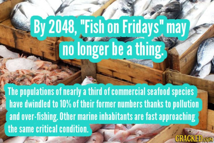 things that will become obsolete, fish to become obsolete, fish in decline statistic
