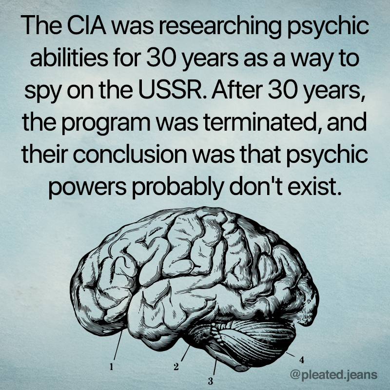cia psychic fact, true fact, true facts, interesting fact, interesting facts, strange fact, curious fact, strange facts, curious facts, weird fact, weird facts, facts that sound made up, fact that sounds made up, really really fact, really really facts, cool fact, cool facts, random fact, random facts, random true fact, random true facts, fact meme, facts meme, fact memes, facts memes, picture with fact on it, pictures with facts, picture with fact, pictures with facts on them