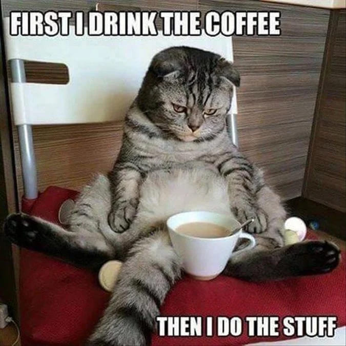 first i drink the coffee meme, funny drinking coffee first meme