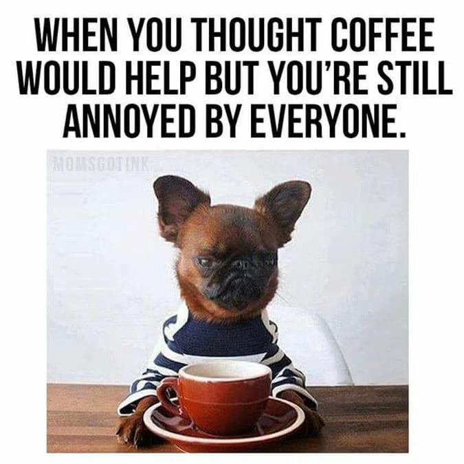 everyone is still annoying coffee meme, people are annoying coffee meme, coffee meme, coffee memes, funny coffee memes, funny coffee meme, hilarious coffee meme, need coffee meme, morning coffee meme, coffee time meme, drinking coffee meme, more coffee meme, memes about coffee, hilarious coffee memes, funny memes about coffee, coffee meme images, coffee meme pictures, funny meme about coffee, best coffee memes, meme about coffee, coffee lover meme, coffee lovers meme, joke about coffee, coffee joke, coffee jokes, funny joke about coffee, funny coffee jokes, funny coffee joke, funny coffee picture, funny coffee image, funny pictures about coffee, funny image about coffee, funny picture about coffee