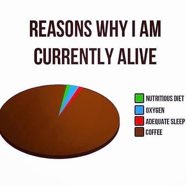 funny reasons i am still alive coffee meme, funny coffee pie chart meme, funny coffee pie chart joke