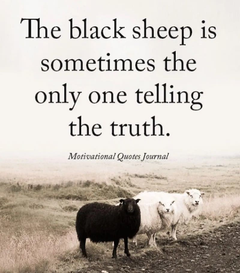 the black sheep is sometimes the only one telling the truth inspirational meme, black sheep inspirational meme, inspirational meme, inspirational memes, inspiring meme, inspiring memes, inspirational image, inspirational images, inspirational pictures, inspirational picture, encouraging meme, encouraging memes, encouraging picture, encouraging pictures, positive meme, positive memes, inspiring image, inspiring images, inspiring picture, inspiring pictures, inspirational quote image, inspirational quote picture, inspirational quote images, inspirational quote pictures